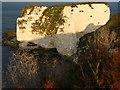 SZ0582 : Old Harry Rocks by Andy Jamieson