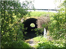 NS3977 : Pedestrian underpass beneath dual carriageway by Lairich Rig