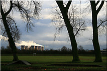 SK4833 : Three Poplars in West Park by David Lally