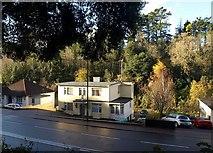 SX9065 : Houses on Newton Road, Torquay by Derek Harper