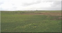 SH3368 : View north along the marshy valley floor. by Eric Jones