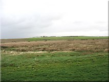SH3368 : View across the valley floor wetlands below Bodfeirig Farm by Eric Jones