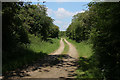 TL6857 : Bridleway from Lucy Wood by Hugh Venables