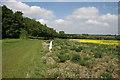 TL6756 : Field margin and bird scarer by Hugh Venables