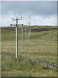 NS2472 : Leaning power poles by Thomas Nugent
