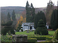 SJ2141 : Plas Newydd: topiary by Stephen Craven
