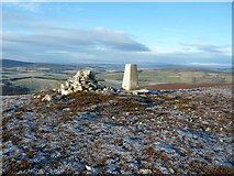 NJ3636 : The summit of The Scalp by alan souter
