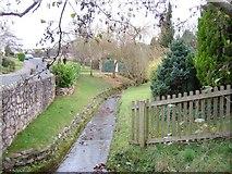 SX8663 : A stream in Marldon by Paul Hutchinson