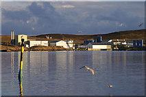 HU4743 : Heogan Fishmeal Factory, Bressay by Mike Pennington
