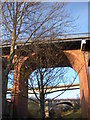 NZ2664 : Bridges from the Ouseburn Valley by hayley green