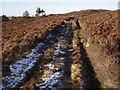 NO0253 : Track South of Lochan Oisinneich Mor by Dorothy Carse
