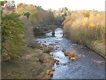 NS7354 : The Avon Water (near  Chatelherault) by G Laird