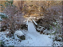NM8464 : Footbridge over Strontian River by Richard Laybourne