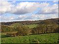 SU8597 : Farmland, Lower North Dean by Andrew Smith