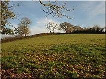 ST0107 : St Andrew's Hill by Derek Harper