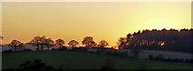 TQ3097 : Farmland, Hog Hill, Enfield by Christine Matthews