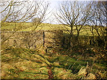 SE0328 : Site of the Chapel in Throstle Bower Graveyard by Alexander P Kapp