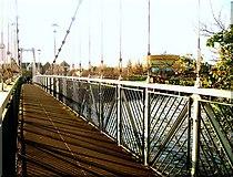 SX9291 : Suspension Footbridge on the Exe by Jan Baker