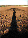 TG2834 : A long shadow by Evelyn Simak
