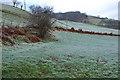 SH7904 : Hillside west of Mathafarn by Nigel Brown