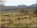 SH5625 : Farmland beside Llanbedr Airfield by John Lucas