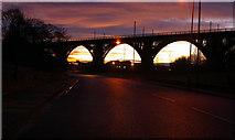 NZ3166 : Railway Viaduct near Rosehill, Wallsend by john sayers