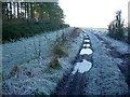 TL5754 : Frost shadow by Hugh Venables