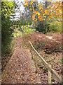SU5369 : New walkway across seasonal stream by Sandy B