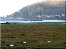 SH6214 : A view across the saltmarsh towards Barmouth by John Lucas