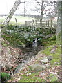NN9953 : Dry stone wall by Russel Wills