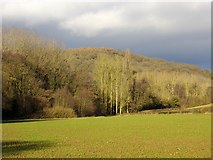 SO7334 : Path to Clenchers Mill by Bob Embleton