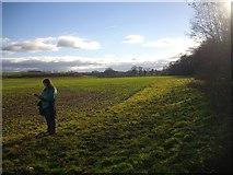 SO7334 : Wide field margin near Clenchers Mill by Bob Embleton