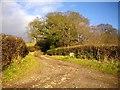 SO7334 : The track to Hill Farm by Bob Embleton