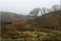 NR7515 : View to Balnabraid Glen by Johnny Durnan