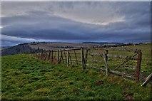 NO1846 : Field boundary near Bonnington by David Martin