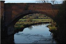 SU4726 : River Itchen by Dr Simon Newman