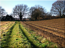 SU7824 : Farmland to the east of Sussex Border Path by Chris Gunns