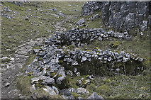 SD8965 : Ruined sheep pen by Tom Richardson