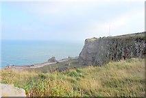 SX9456 : Berry Head quarry by Paul Hutchinson