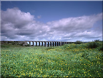 SD7579 : Ribblehead Viaduct by Tom Richardson