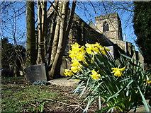 SK3836 : St Mary's Church Chaddesden by Michael Fitchett