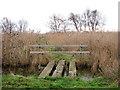 TG4522 : Plank bridge over drain by Evelyn Simak