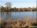 SO8630 : View across the River Severn by Pauline E