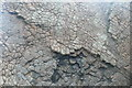 NR4475 : Basalt Dike, South-West Coast of Jura by Peter Edwards