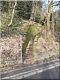 SE1307 : Footpath from Modd Lane, off Woodhead Road, Holmfirth by Humphrey Bolton