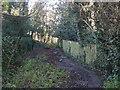 TQ2585 : Oak Hill Way, NW3 (3) by Mike Quinn