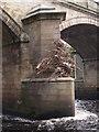 NZ0561 : Flood debris on Bywell Bridge by Clive Nicholson