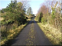 G9940 : Road at Laghty Barr by Kenneth  Allen