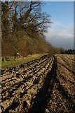 SO8843 : Ploughed headland by Philip Halling
