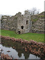 TG1238 : Baconsthorpe Castle - reflection by Evelyn Simak